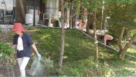 近隣道路のゴミ拾いと草刈り清掃